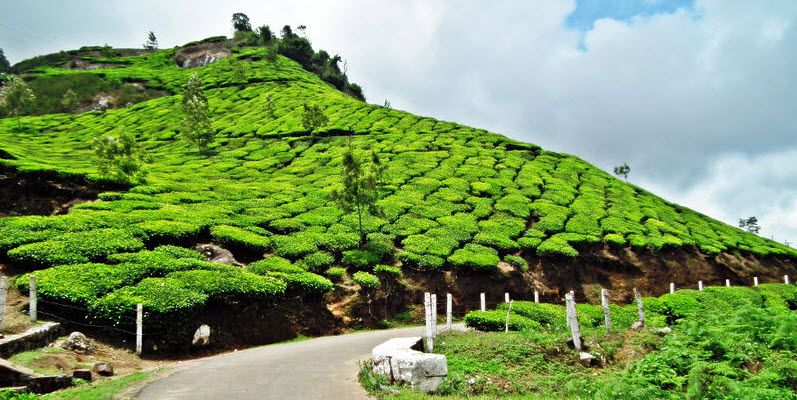 hill stations India has abundant hill stations spread all over the country that makes for a tranquil and picturesque destination for tourists kashmir has some of the most beautiful hill stations in india which include pahalgam, gulmarg, srinagar and sonmarg in himachal pradesh also tourists can be spoilt for.